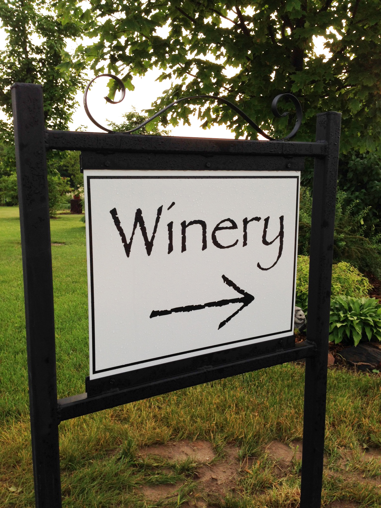 An afternoon at the Winery